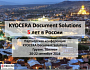 Kyocera Document Solutions 5 лет в России